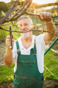 If you are physically fit and enjoy the outdoors work in a park or on a farm may be for you.
