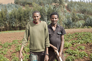 Access to work through subsistence farming may be the reason why outcomes for schizophrenia are better in developing countries than in the industrialised North
