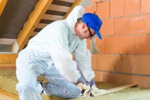 There are local schemes to help improve your home's insulation and reduce heating bills. (Image:  Kzenon on Shutterstock)
